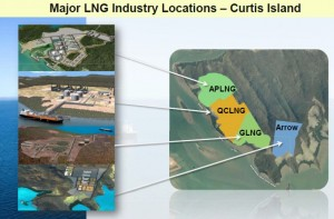 Curtis Island CS Plants in Gladstone